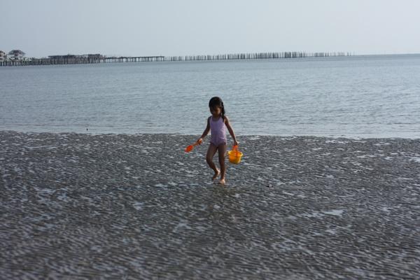 Zara combing the beach