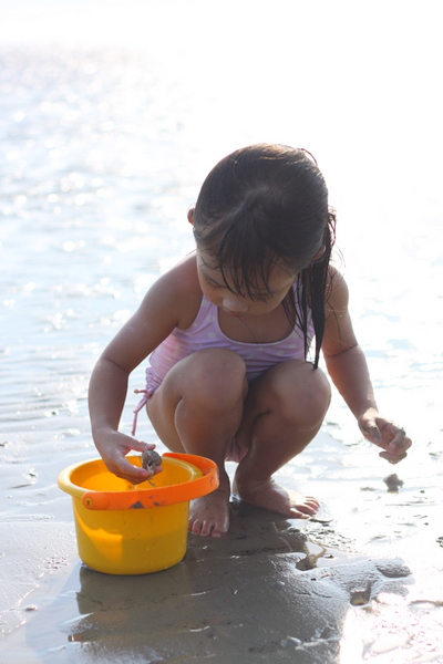 Zara picking up sea snails from the beach