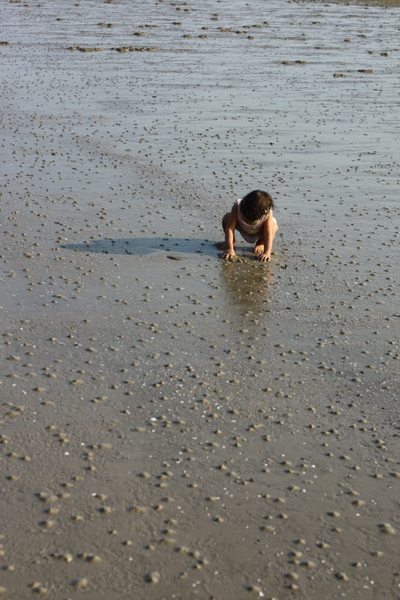 Zaria still looking for crabs and snails