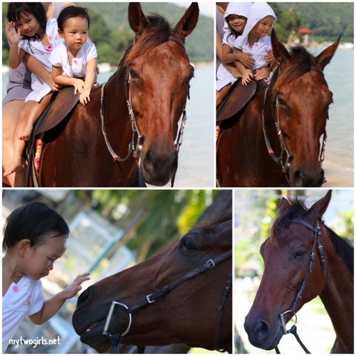 Horse Riding at Bayview Beach Resort