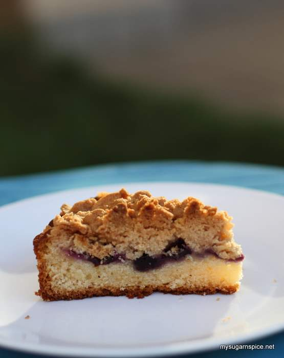 A Slice of Blueberry Crumble Cake
