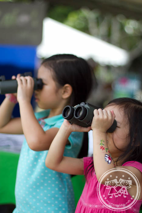 Girls using binoculars