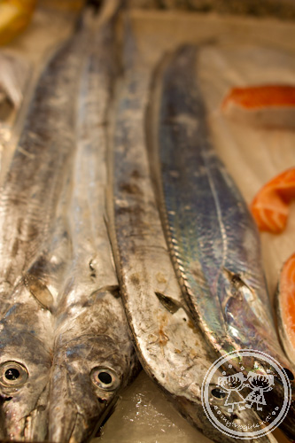 Fresh belt fish