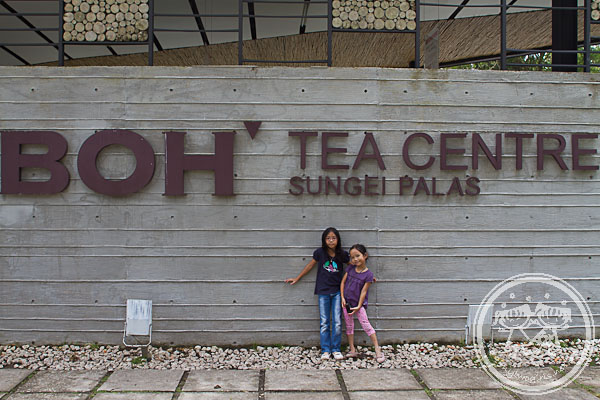 Boh Sungai Palas Tea Centre