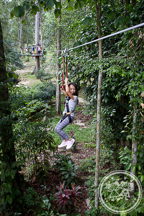 Skytrex - flying fox