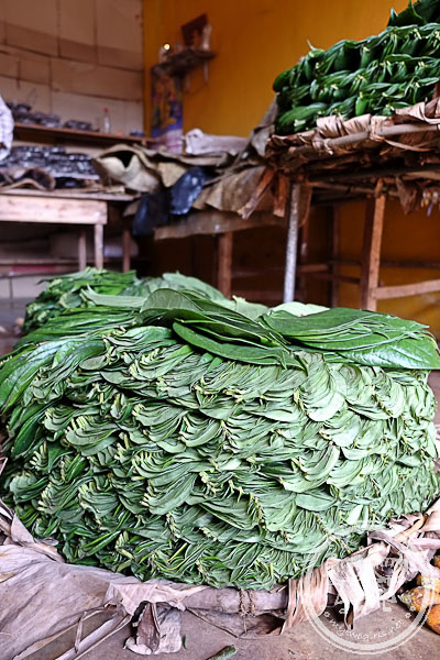 Betel leaves at Dambulla Wholesale Market