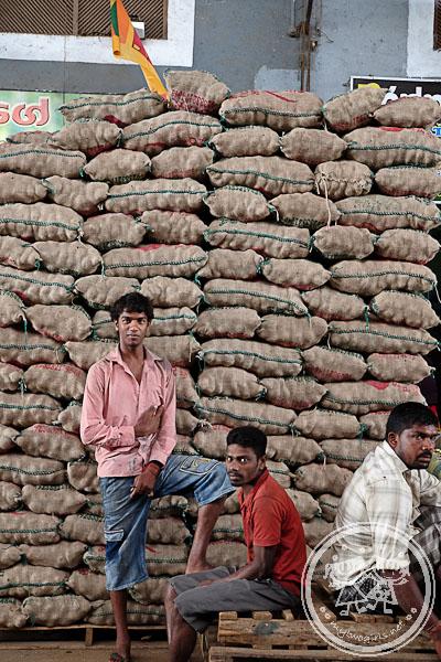 Dambulla Wholesale Market