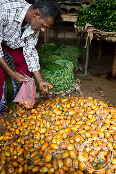 Areca nuts at Dambulla Wholesale Market