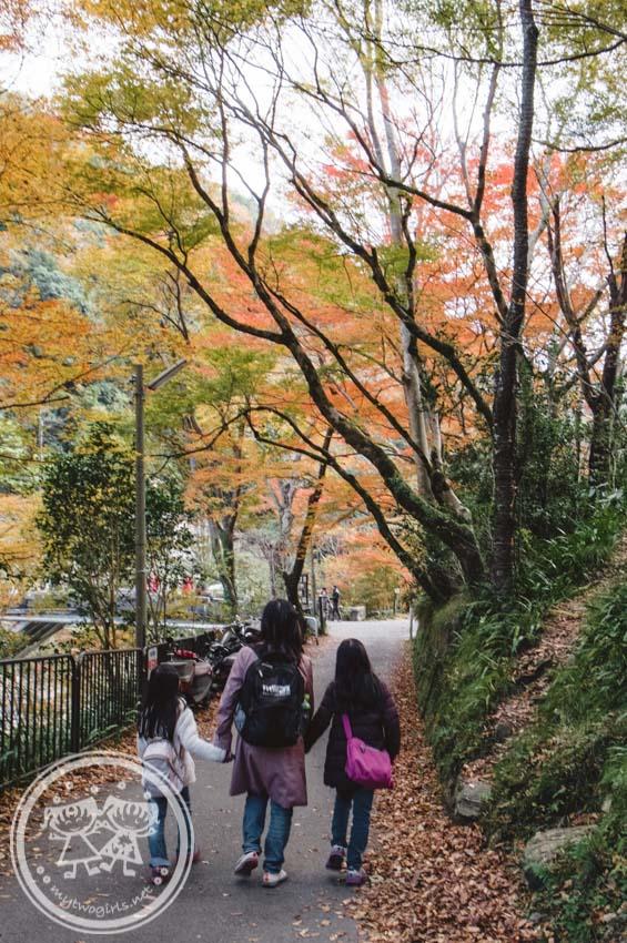 Kiyotaki Tokai Nature Trail