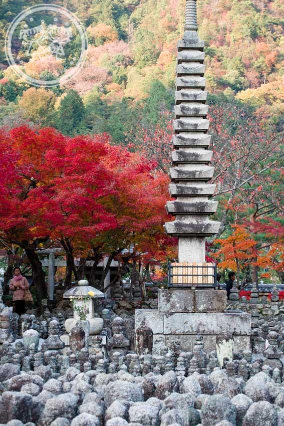Autumn at Adashino Nenbutsuji