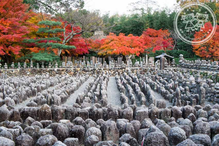 Autumn at Adashino Nenbutsuji