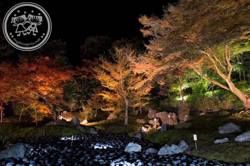 Tenryuji Autumn Light Up