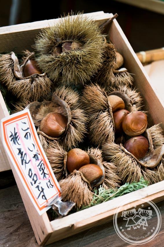 Nishiki Market Chest Nut Shop
