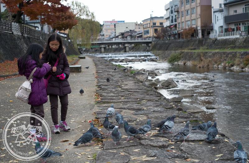Takayama river bank