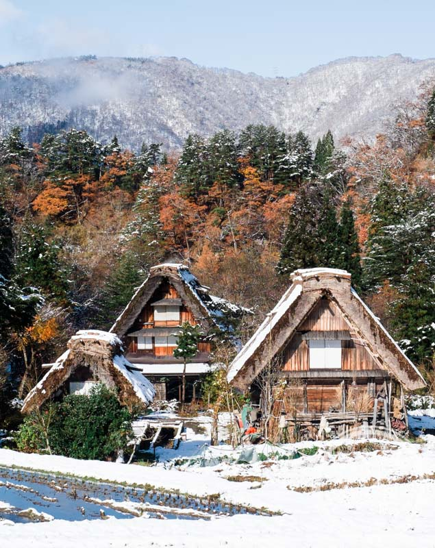 Gassho-zukuri farm houses at Shirakawa-go