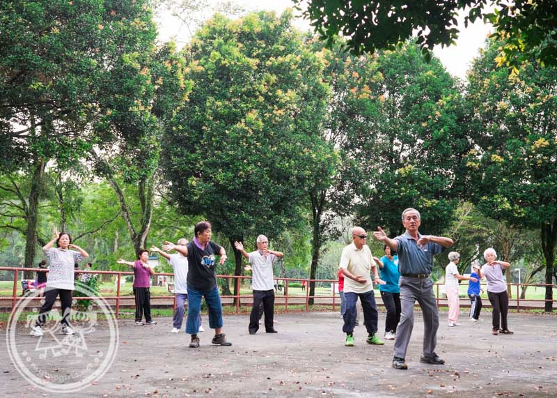 Taichi at Taiping Lake Garden