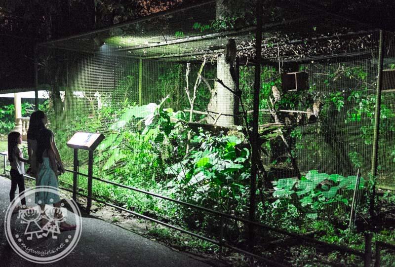 Night Safari Taiping Zoo